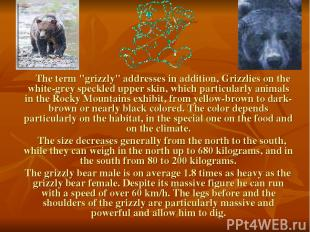 "The term ""grizzly"" addresses in addition, Grizzlies on the white-grey speckled u"