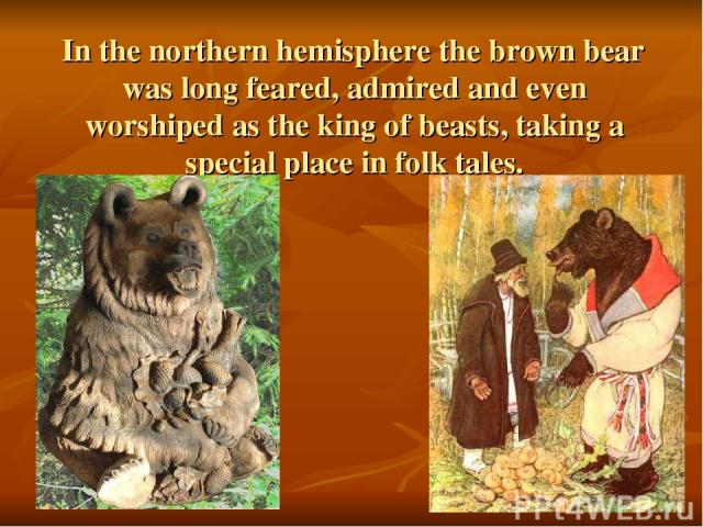 In the northern hemisphere the brown bear was long feared, admired and even worshiped as the king of beasts, taking a special place in folk tales.