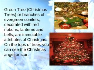Green Tree (Christmas Trees) or branches of evergreen conifers, decorated with r