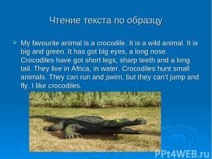 Чтение текста по образцу My favourite animal is a crocodile. It is a wild animal