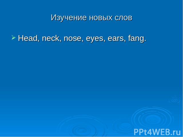 Изучение новых слов Head, neck, nose, eyes, ears, fang.