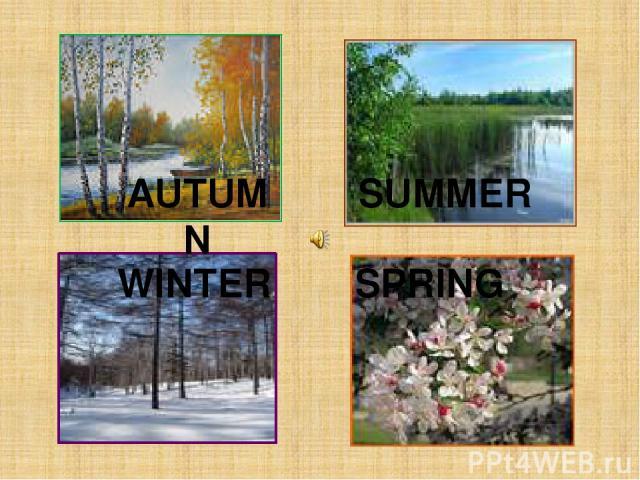 AUTUMN SPRING SUMMER WINTER