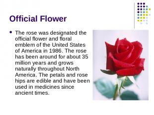 Official Flower The rose was designated the official flower and floral emblem of