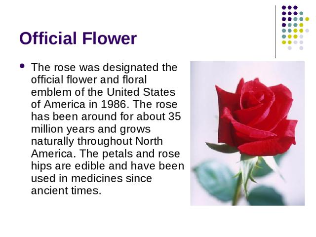 Official Flower The rose was designated the official flower and floral emblem of the United States of America in 1986. The rose has been around for about 35 million years and grows naturally throughout North America. The petals and rose hips are edi…