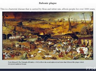 Bubonic plague This is a bacterial disease that is carried by fleas and infest r