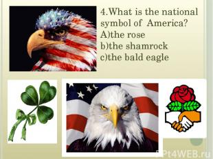 4.What is the national symbol of America? A)the rose b)the shamrock c)the bald e