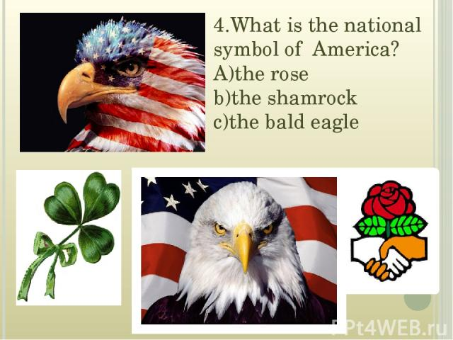4.What is the national symbol of America? A)the rose b)the shamrock c)the bald eagle