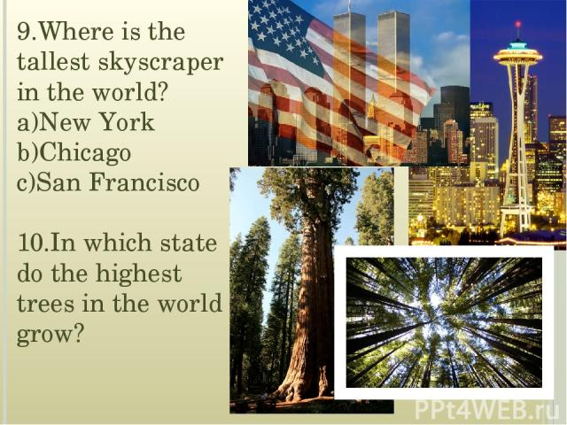 9.Where is the tallest skyscraper in the world? a)New York b)Chicago c)San Francisco 10.In which state do the highest trees in the world grow?