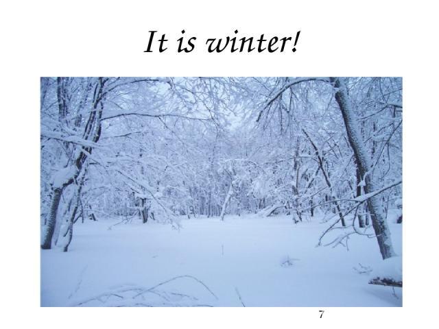 It is winter!