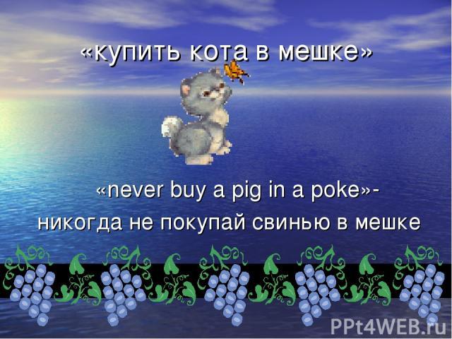 «купить кота в мешке» «never buy a pig in a poke»- никогда не покупай свинью в мешке