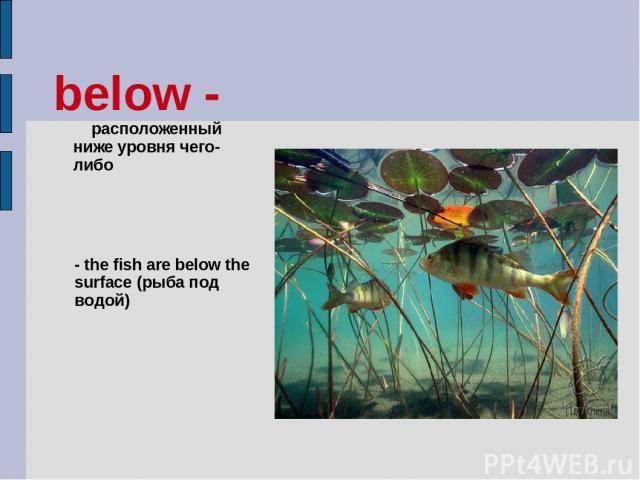 below - расположенный ниже уровня чего-либо - the fish are below the surface (рыба под водой)