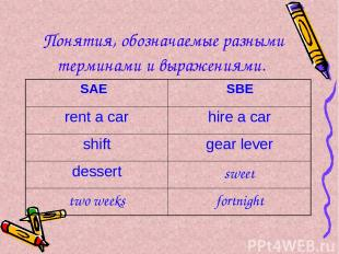 Понятия, обозначаемые разными терминами и выражениями.