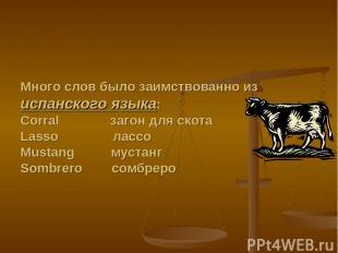 Много слов было заимствованно из испанского языка: Corral загон для скота Lasso