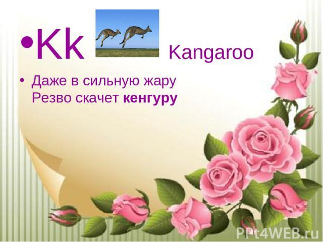 Kk Kangaroo Даже в сильную жару Резво скачеткенгуру