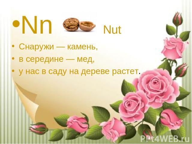Nn Nut Снаружи — камень, в середине — мед, у нас в саду на дереве растет.