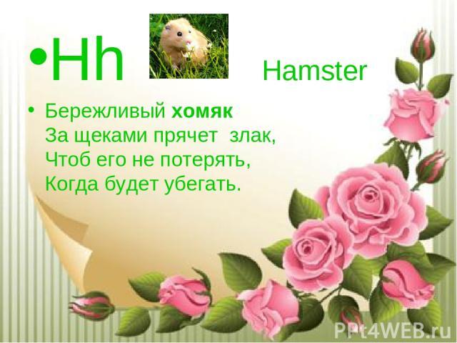 Hh Hamster Бережливыйхомяк За щеками прячетзлак, Чтоб его не потерять, Когда будет убегать.