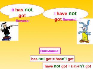 I have not got flowers! It has not got flowers! have not got = haven't got Внима