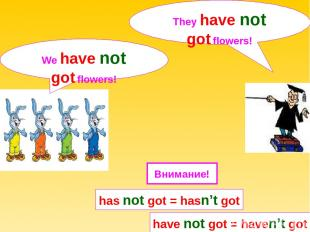 We have not got flowers! They have not got flowers! has not got = hasn't got hav