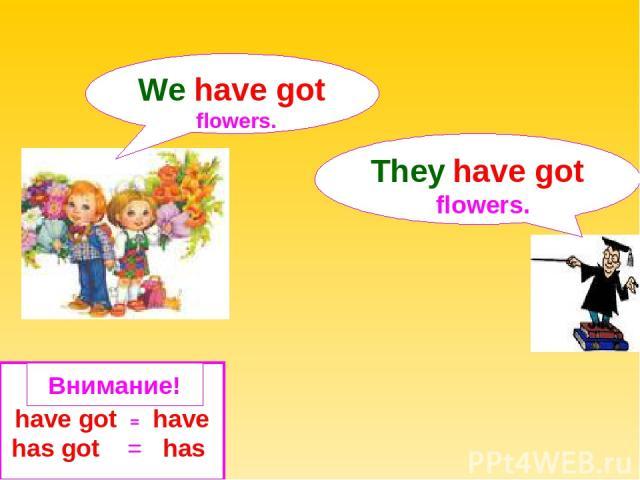 have got = have has got = has We have got flowers. They have got flowers. Внимание!