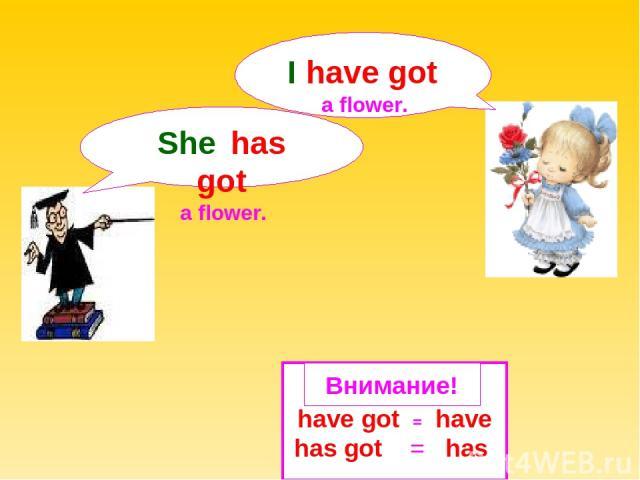 have got = have has got = has She has got a flower. Внимание! I have got a flower.