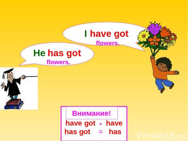 have got = have has got = has Внимание! He has got flowers. I have got flowers.