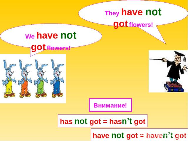 We have not got flowers! They have not got flowers! has not got = hasn't got have not got = haven't got Внимание!