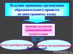 Ведущие принципы организации образовательного процесса по иностранному языку кул