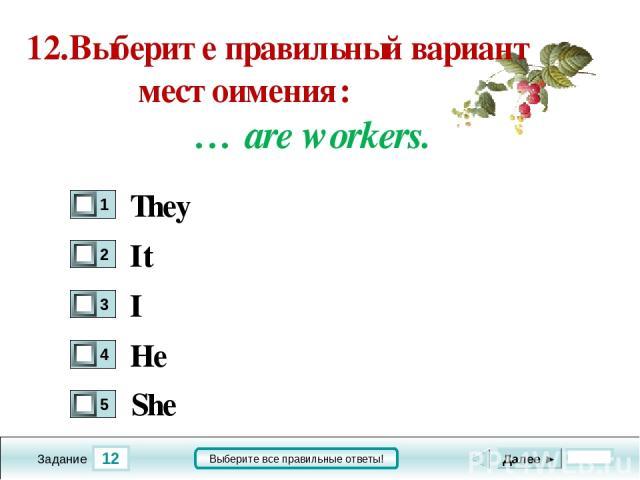 12 Задание Выберите все правильные ответы! 12.Выберите правильный вариант местоимения: … are workers. It I He Далее ► They She