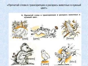 «Прочитай слова в транскрипции и раскрась животных в нужный цвет»