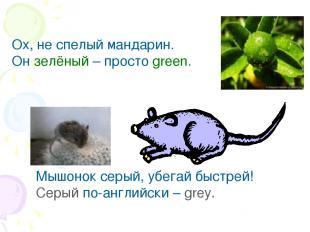 Ох, не спелый мандарин. Он зелёный – просто green. Мышонок серый, убегай быстрей