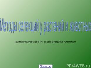 Выполнила ученица 9 «А» класса Суворкина Анастасия 5klass.net