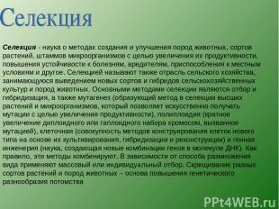 Селекция - наука о методах создания и улучшения пород животных, сортов растений,