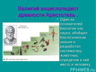 Великий энциклопедист древности Аристотель . Один из основателей биологии как на