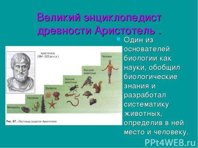 Великий энциклопедист древности Аристотель . Один из основателей биологии как науки, обобщил биологические знания и разработал систематику животных, определив в ней место и человеку.