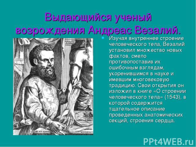 Выдающийся ученый возрождения Андреас Везалий. Изучая внутреннее строение человеческого тела, Везалий установил множество новых фактов, смело противопоставив их ошибочным взглядам, укоренившимся в науке и имевшим многовековую традицию. Свои открытия…