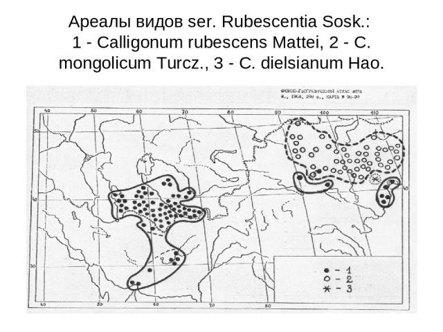 Ареалы видов ser. Rubescentia Sosk.: 1 - Calligonum rubescens Mattei, 2 - C. mongolicum Turcz., 3 - C. dielsianum Hao.