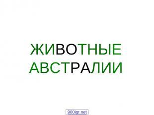 ЖИВОТНЫЕ АВСТРАЛИИ 900igr.net