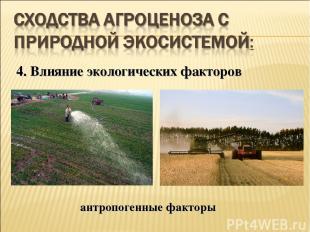 4. Влияние экологических факторов антропогенные факторы