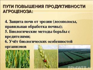 ПУТИ ПОВЫШЕНИЯ ПРОДУКТИВНОСТИ АГРОЦЕНОЗА: 4. Защита почв от эрозии (лесополосы,