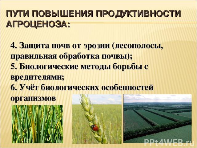 ПУТИ ПОВЫШЕНИЯ ПРОДУКТИВНОСТИ АГРОЦЕНОЗА: 4. Защита почв от эрозии (лесополосы, правильная обработка почвы); 5. Биологические методы борьбы с вредителями; 6. Учёт биологических особенностей организмов