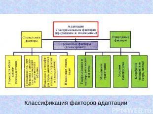 Классификация факторов адаптации