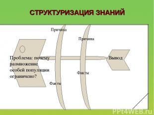 СТРУКТУРИЗАЦИЯ ЗНАНИЙ