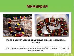 Мимикрия Молочная змея успешно имитирует окраску кораллового аспида Как правило,
