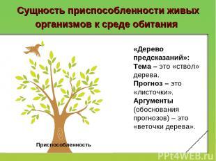 Сущность приспособленности живых организмов к среде обитания Приспособленность «