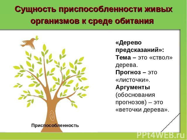 Сущность приспособленности живых организмов к среде обитания Приспособленность «Дерево предсказаний»: Тема – это «ствол» дерева. Прогноз – это «листочки». Аргументы (обоснования прогнозов) – это «веточки дерева».