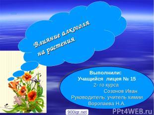 Выполнили: Учащийся лицея № 15 2- го курса Созонов Иван Руководитель: учитель хи
