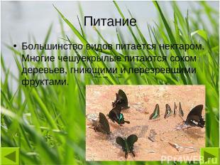 Питание Большинство видов питается нектаром. Многие чешуекрылые питаются соком д