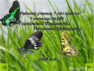 Работа учениц 7 «б» класса Гимназии №144 Горяйновой Елизаветы, Петровой Екатерин