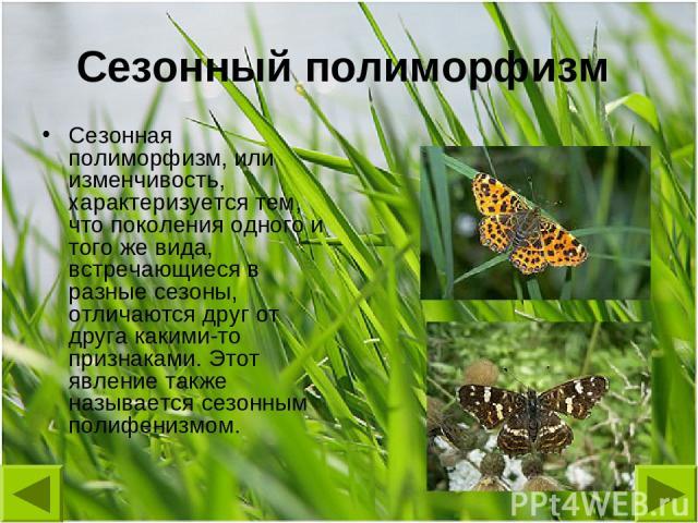 Сезонный полиморфизм Сезонная полиморфизм, или изменчивость, характеризуется тем, что поколения одного и того же вида, встречающиеся в разные сезоны, отличаются друг от друга какими-то признаками. Этот явление также называется сезонным полифенизмом.