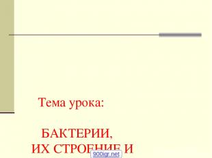 Тема урока: БАКТЕРИИ, ИХ СТРОЕНИЕ И ЖИЗНЕДЕЯТЕЛЬНОСТЬ. 6 класс Учитель биологии